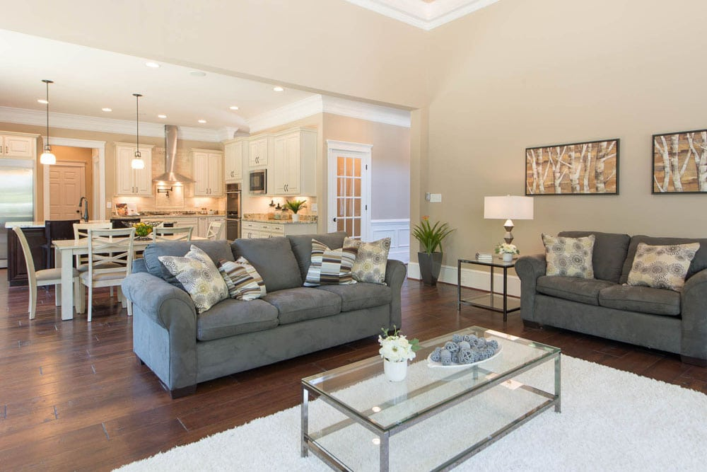 Living room and kitchen in Fairfax home